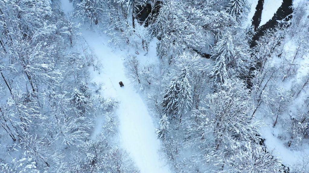 Valea Avrigului – Winter